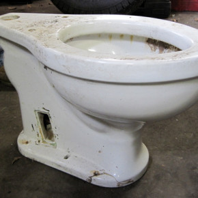 hitler_toilet_012513_620px